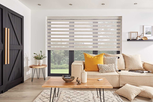 dressing your windows with vision blinds